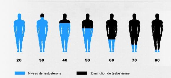 La production de testostérone chez l'homme baisse en fonction de son âge.