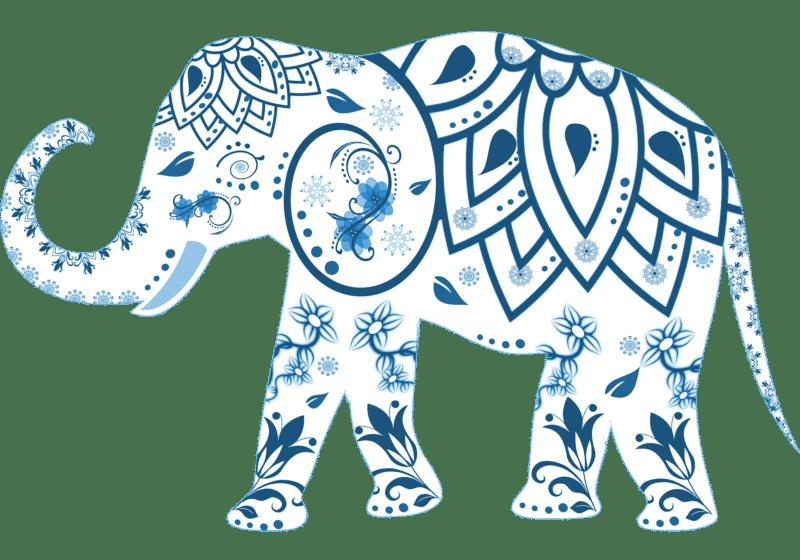 Les chemins de l'Ayurvéda : mieux vivre en conscience